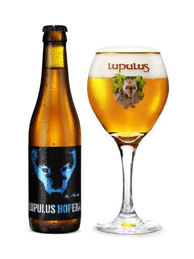 lupulus-hopera